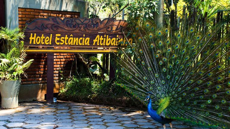Como estamos prevenindo o Coronavírus Covid-19 no Hotel Estância Atibainha