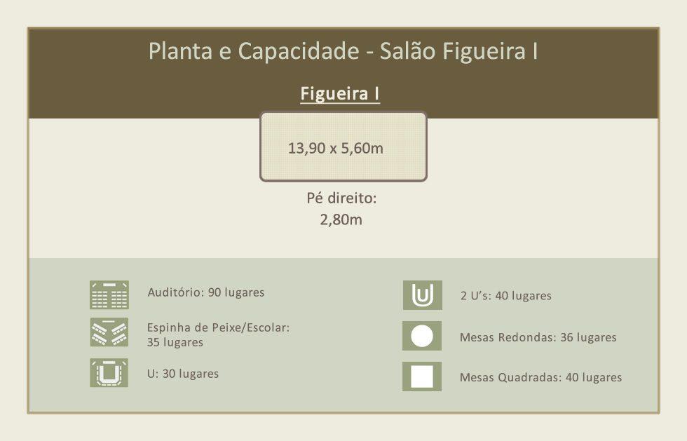 figueira-I-1